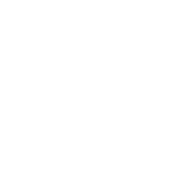 Brilliant Gin Logo